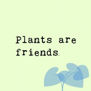 Plants are friends.
